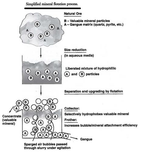 Mineral Flotation Process