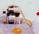 Following image filter paper that no gold water was cleaned by distilled water completely.
