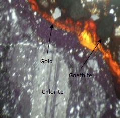Gold grain detected at 63x
