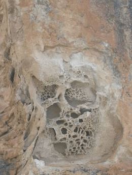 Indication of Vughy Silica Formation
