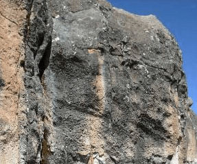 Mineralized Structures