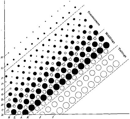 Arrangement of Grains