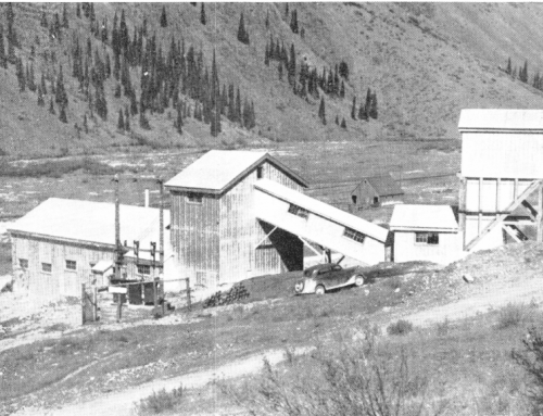 Mineral Processing Plant Design & Construction Example