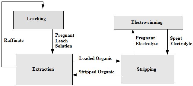 The Process of Leach SX EW