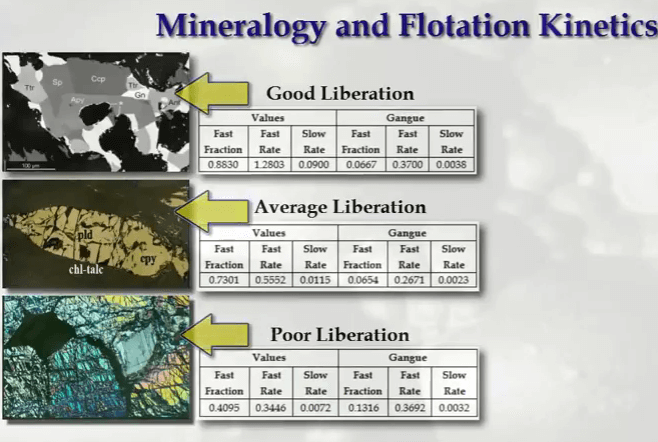 flotation_liberation