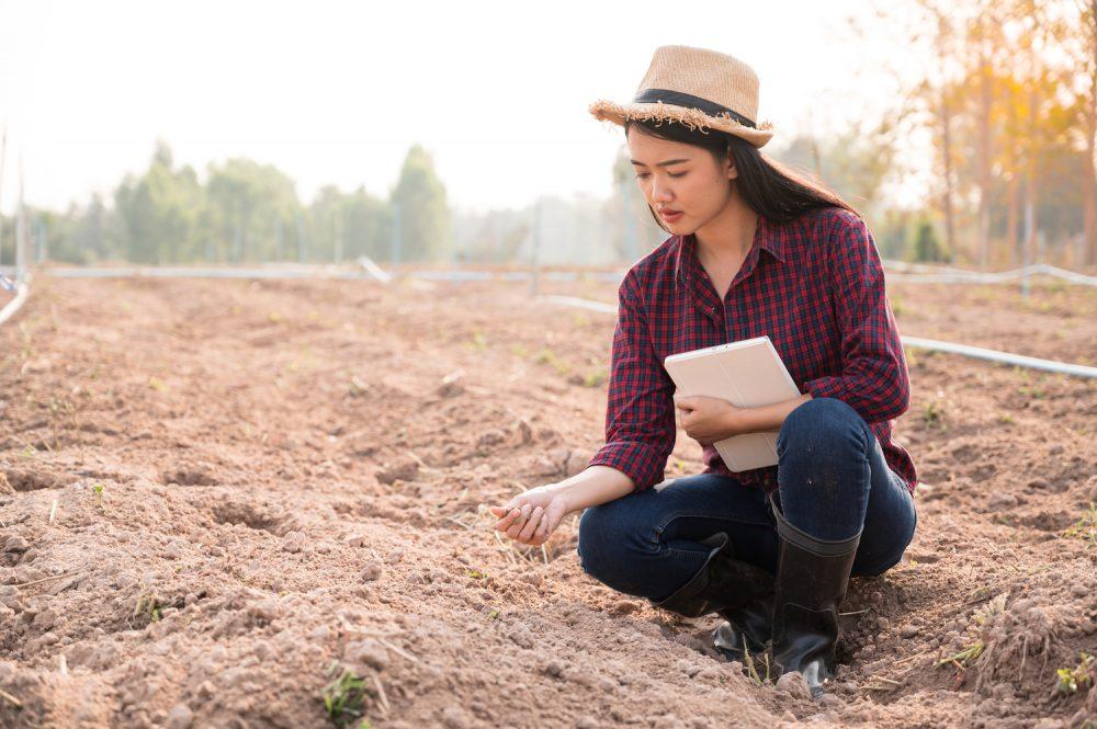 Best Soil Samplers 1