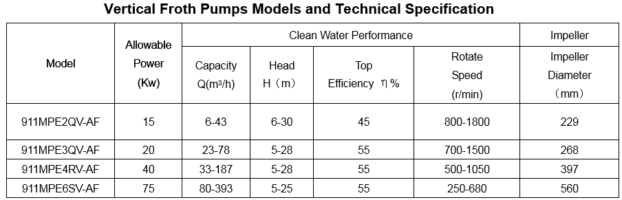 vertical_froth_pumps_models_and_technical_specification