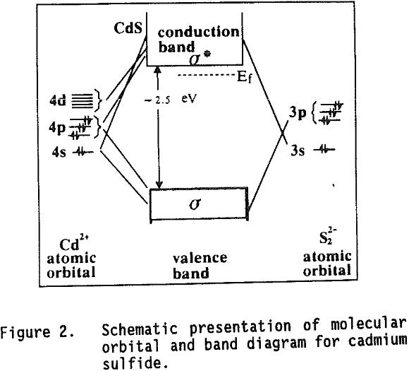 Bioleaching of Cadmium Sulfide Molecular Orbital bioleaching cadmium sulfide