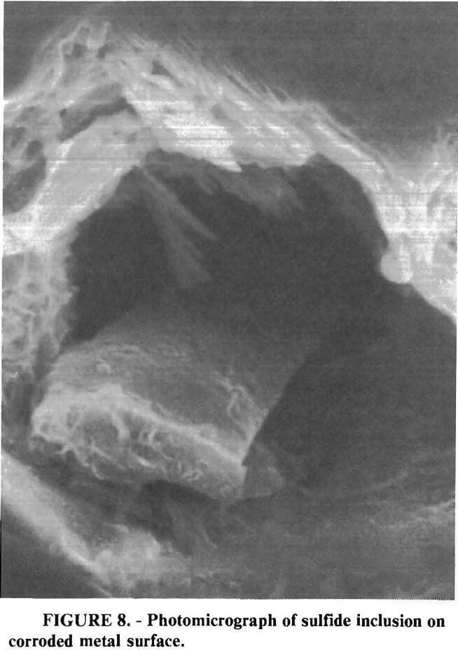 grinding media photomicrograph