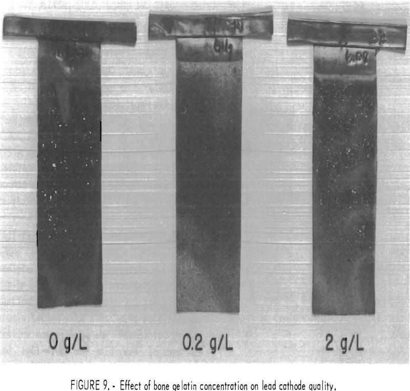 leach-solution effect of bone gelatin concentration