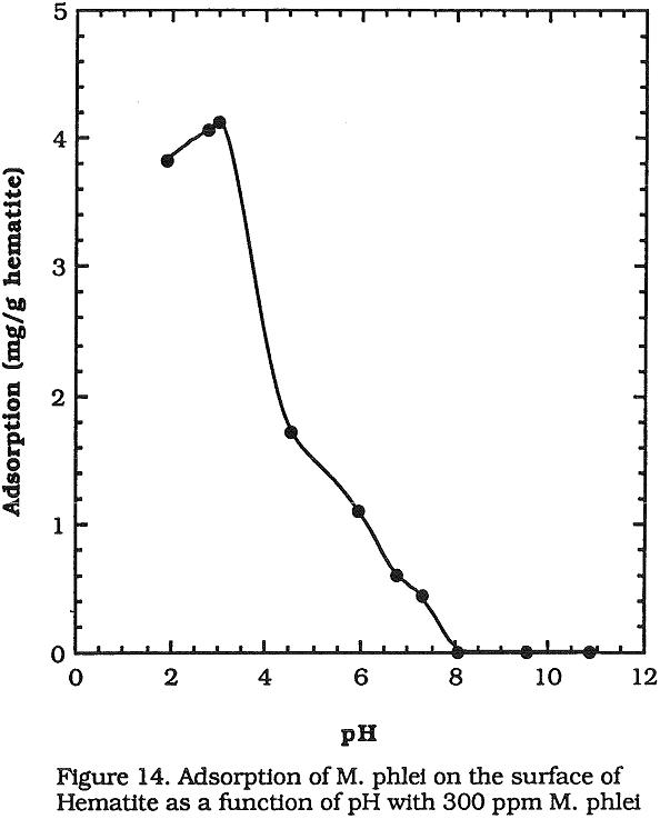 flotation adsorption of m phlei