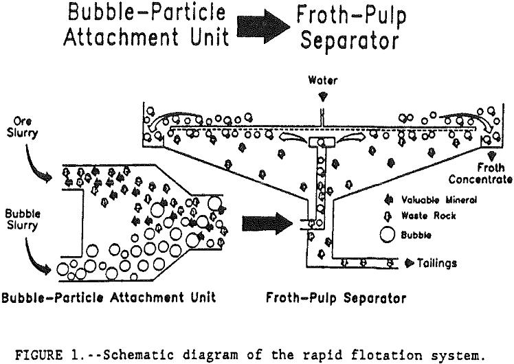 flotation-kinetics diagram of the rapid flotation system