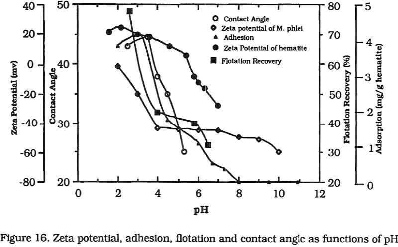 flotation zeta potential adhesion