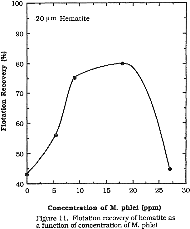 flotation recovery of hematite as a function of concentration
