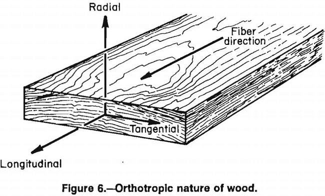 wood crib orthotropic nature