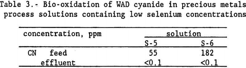 heap-rinsing-bio-oxidation