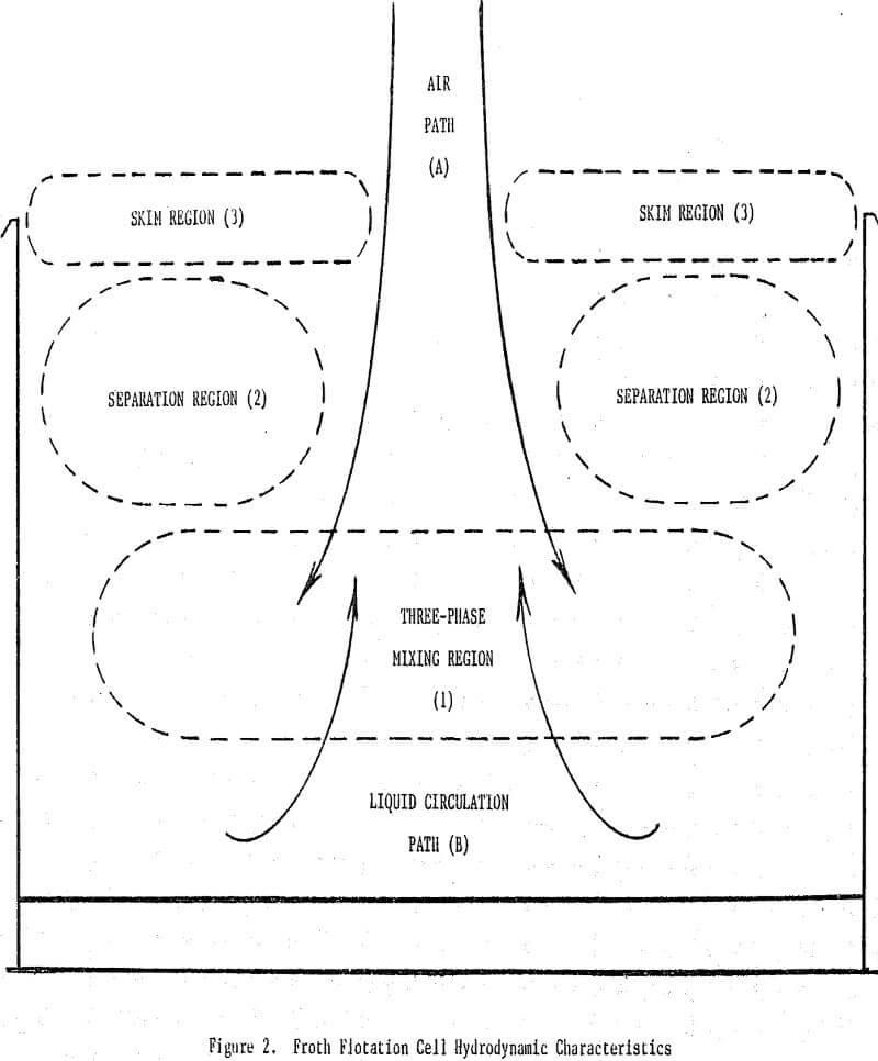 flotation hydrodynamic characteristics