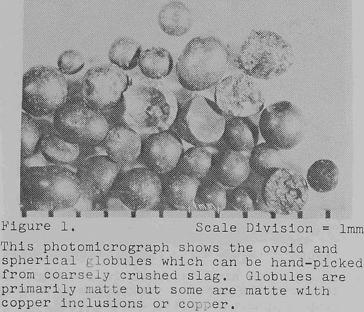 recovery of copper photomicrograph