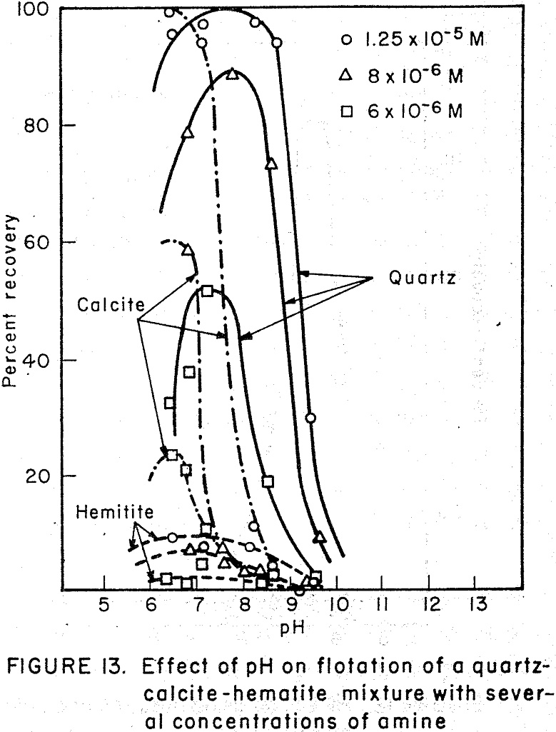 flotation concentration of amine